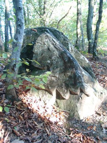 pierre dentelée