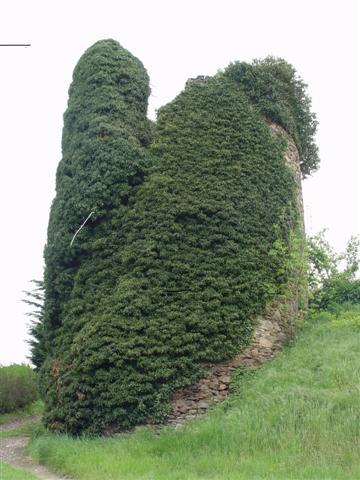 chateau Vaudragon
