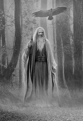 La ligne sacree des druides 07