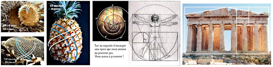 La ligne sacree des druides 20